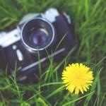 camera-photographer-yellow-photography