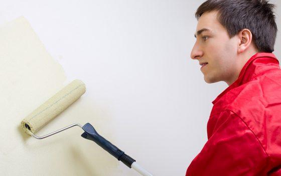 Choosing a Paint Finish