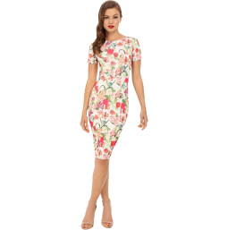 unique-vintage-short-sleeve-stretch-mod-wiggle-dress_1