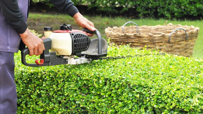 The Many Health Benefits of your Lawn