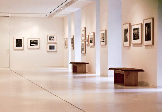 The Inhotim is a giant art gallery