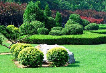 10 Landscape Ideas for Your Backyard