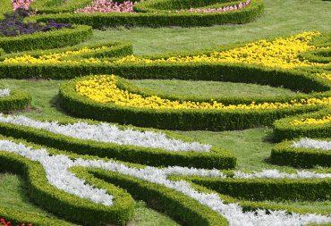 Landscape Design Services: Professional vs. DIY