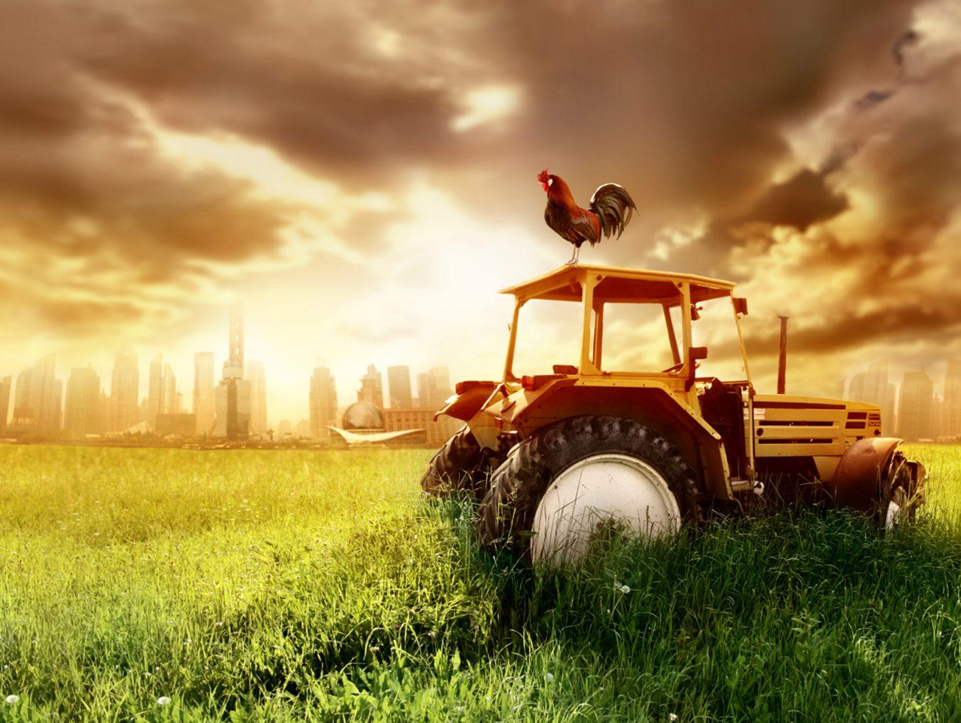 The Toughest US States for Starting a Farm