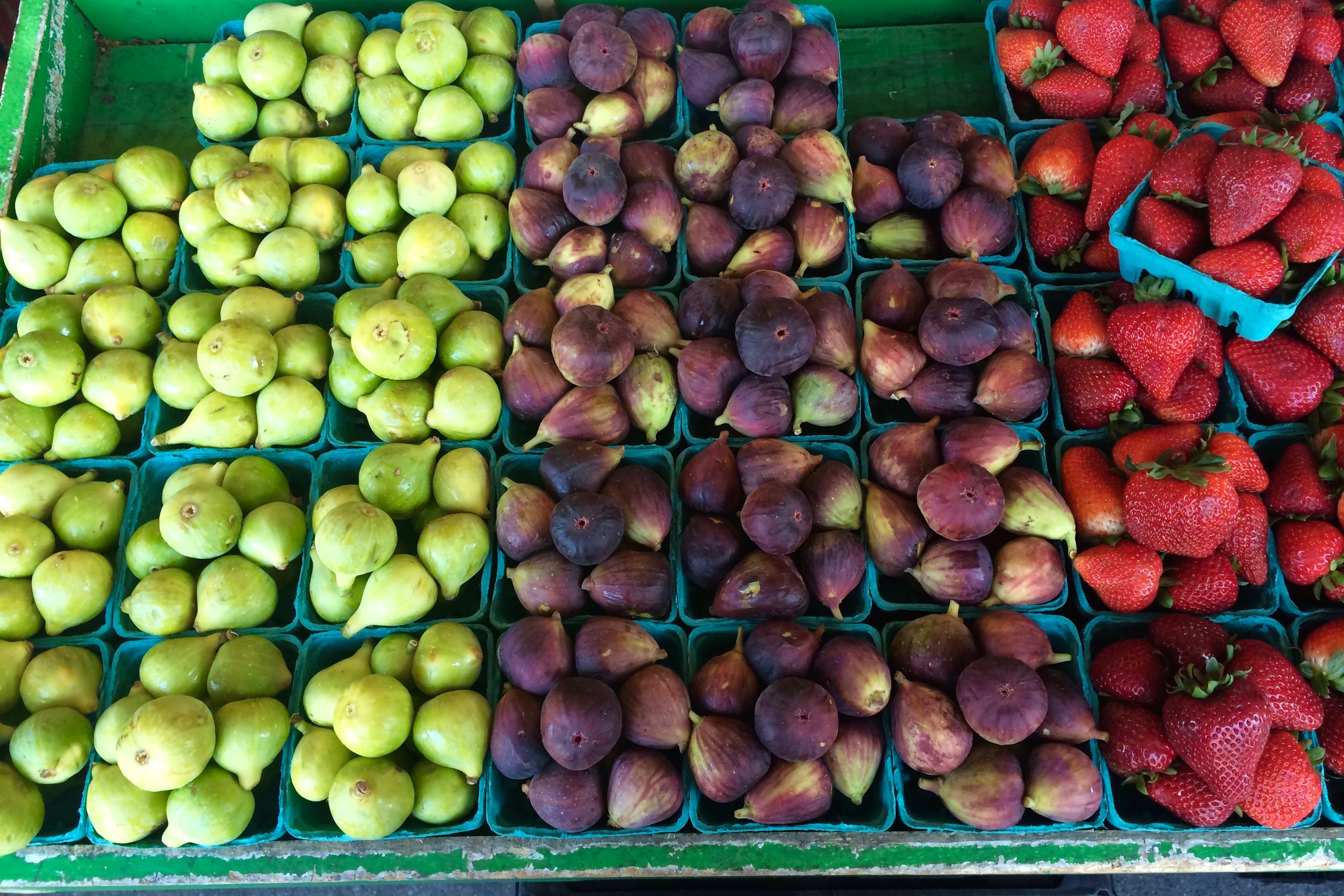 Standardizing the Organic Industry in the USA